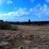 Testbild Asus ZenFone 4: Überzogene Farben