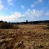 Asus ZenFone 5 Testbild: Etwas überzogene Himmelsfarbe
