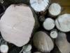 Testbild Avus A34: Holz bei mäßiger Beleuchtung