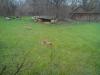 Testbild Avus A57: Geparden im Gaia Zoo