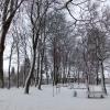 Testbild bq Aquaris E4.5: Park im Schnee