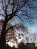 Testbild bq Aquaris E5 HD: Herbstimpression