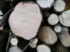 Testbild Huawei Ascend G7: Holz bei mäßigem Licht