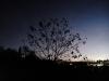 Testbild Huawei Ascend G700: Dunkelheit