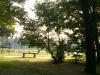 Sony Xperia P - Testbild im Park