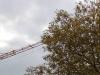 Baum und Kran, Ausschnittsvergrößerung - Alcatel One Touch Idol Ultra