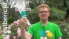 Wiko Bloom Testbericht